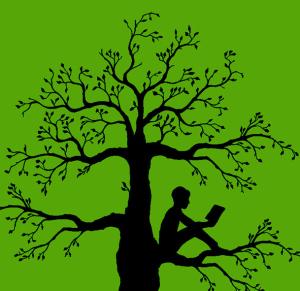 barone albero
